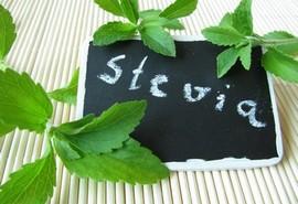 http://quysuckhoe.com/blogs/benh-tieu-duong/duong-co-ngot-stevia-la-gi