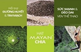 http://quysuckhoe.com/blogs/benh-tieu-duong/cong-dung-va-cach-su-dung-hat-chia-salba