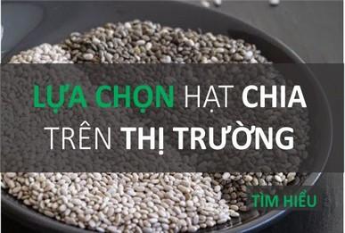 http://quysuckhoe.com/blogs/hat-chia/tat-ca-hoi-va-dap-ve-hat-chia-la-gi-l-mua-hat-chia-uc-hay-my-l-gia-tri-nam-o-dau