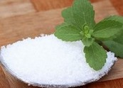 Stevia-organic