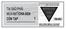 hat-chia-all-black